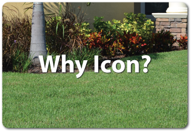 Why-Icon-4