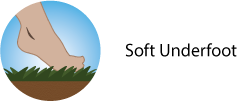 soft-icon2