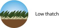 thatch-icon